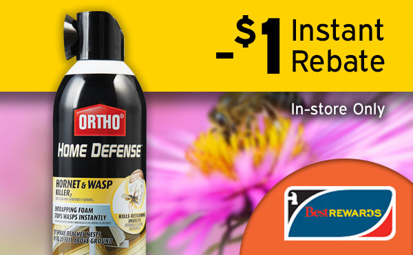Ortho 16 Oz. Foaming Aerosol Spray Wasp & Hornet Killer - Best Rewards